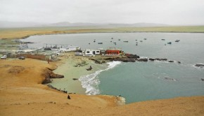Paracas National Reserve, Peru - Peru For Less
