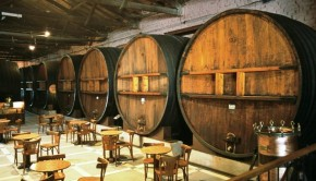"Enjoy Argentina's official ""national drink"" on a wine tour to Mendoza or Salta."