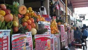 Check out the great variety of fruits in the San Camilo Market, this is the perfect stop for a snack!