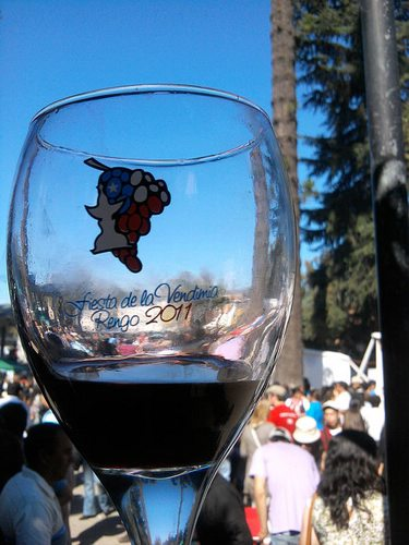 Chile travel, Chile wine tour