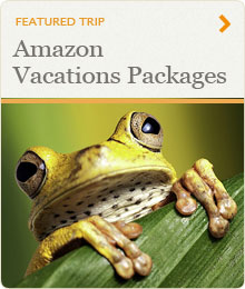 Amazon Vacations Packages
