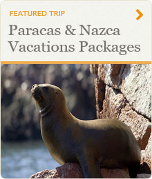 Paracas & Nazca Vacations Packages