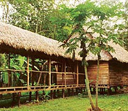 Inotawa Lodge picture, Puerto Maldonado Lodges, Peru For Less