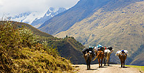 Salkantay trek picture, Peru travel, Peru For Less