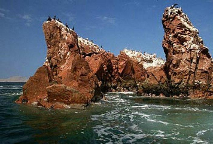 Birds on a rock formation near the Ballestas Islands