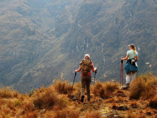 Two hikers with hiking poles walking through a field on the Inca Trail to Machu Picchu.