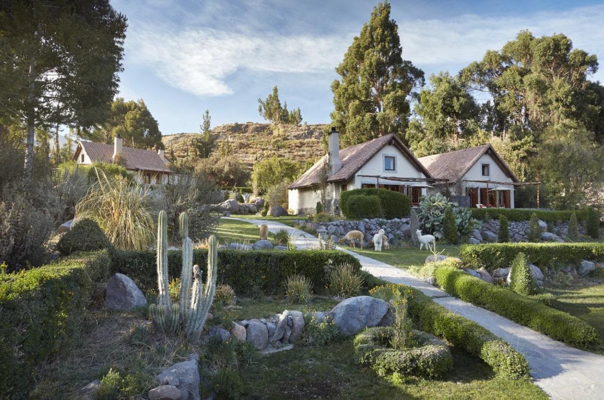 Greenery with casitas and alpacas at Belmond Las Casitas spa resort in Peru.