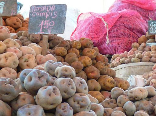 A variety of different types of locally-grown Peruvian potatoes on sale at a market in Peru.