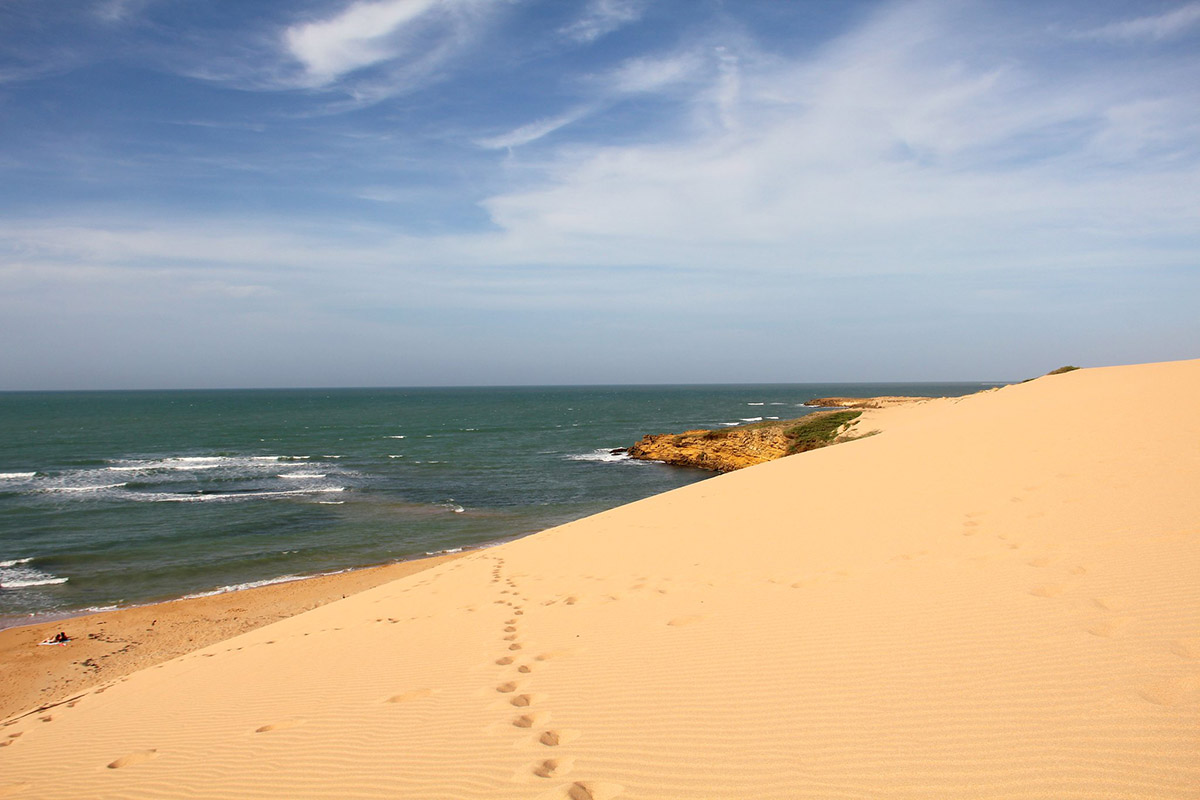 Footprints in the sand leading to the Caribbean Sea in the Guajira Desert.