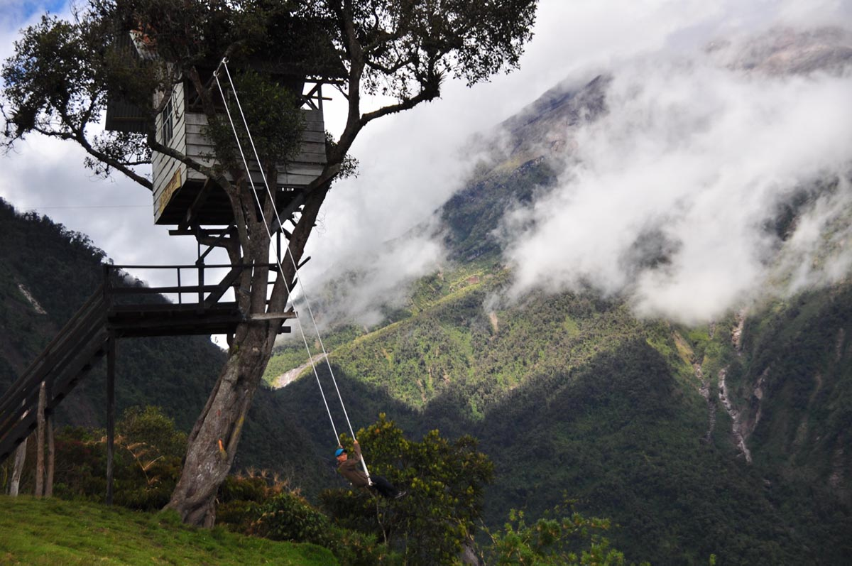 A tree with a treehouse and swing attached surrounded by foggy, green mountain landscapes.