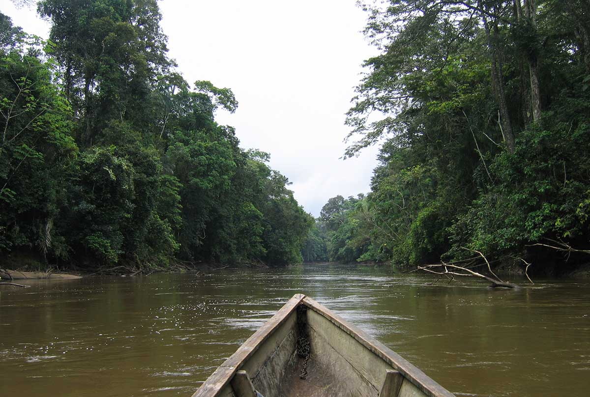 A wooden boat cruises through a river surrounded by green trees in the Amazon Rainforest.