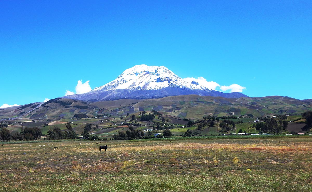 A snow-capped volcano under bright blue skies with uneven plots of farmland in front.
