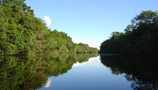 Amazon picture, Peru travel, Peru For Less