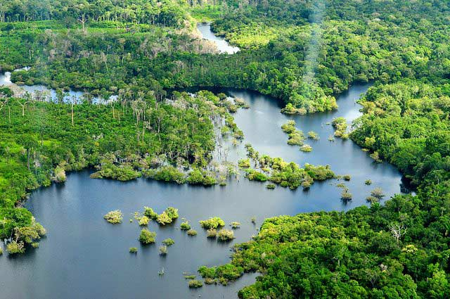 Amazon Rainforest, Brazil - Brazil For Less