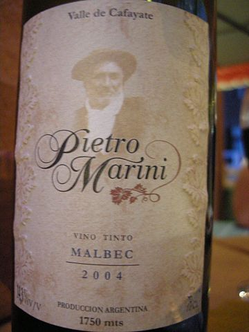 Cafayate wine, Argentina wine tours