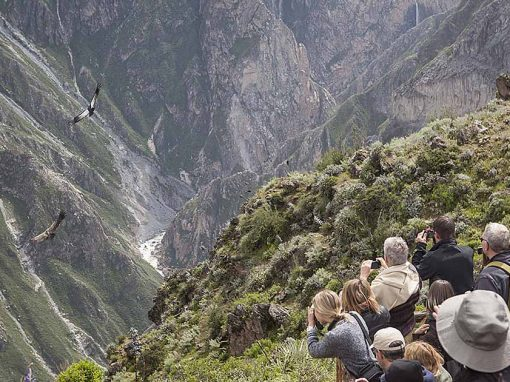 View over the deep colca cayon with tourists looks at flying condors