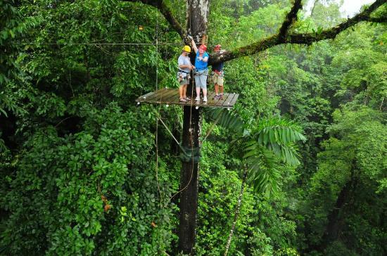 Canopy Adventure Costa Rica Amp Arrive At Costa Ricau0027s