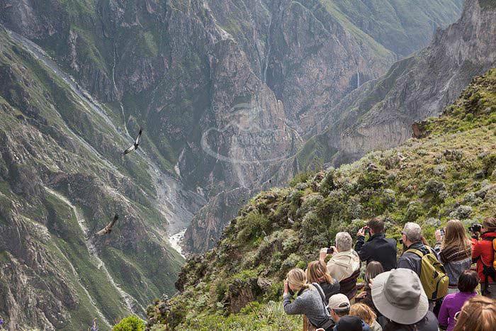 Colca Canyon, Peru, Peru vacations, Peru For Less