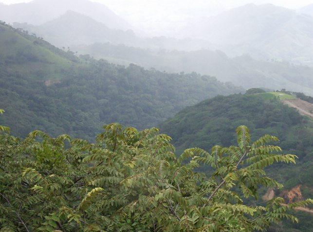 Monteverde Cloud Forest Reserve, Costa Rica, Peru for Less