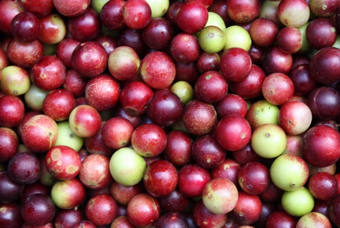 The skin of the camu camu berry paints juices and pulps a delicious shade of pink.