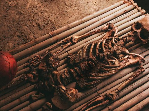 A skeleton next to a ceramic pot at the Royal Tombs of Sipan Museum in Lambayeque.