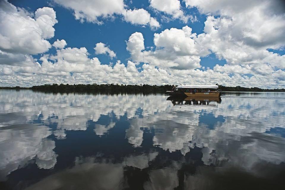 amazon,boat, jungle, peruforless