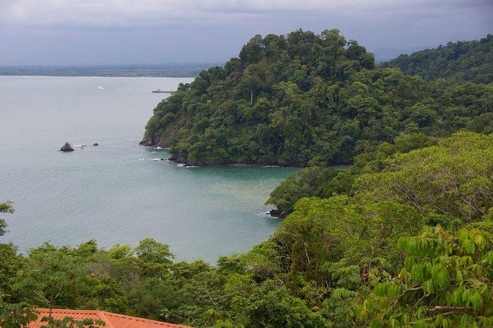 costa rica, monteverde, peruforless