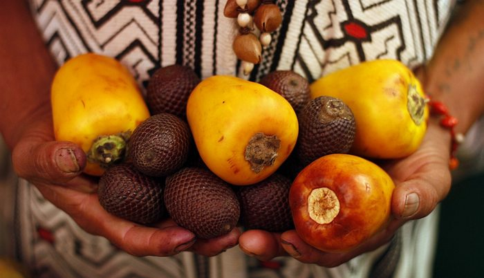 Fruits Belen