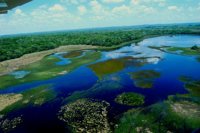 Pantanal Wetlands, Brazil, Brazil For Less