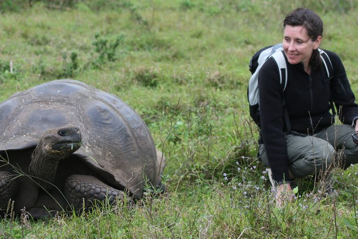 hanging out with a giant tortoise in the Galapagos