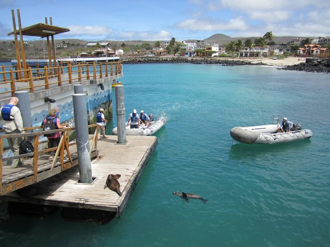 boat tours in the Galapagos