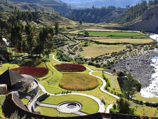 Aerial view of the Colca Lodge. Hotel buildings next to the Colca River with terraced landscapes.