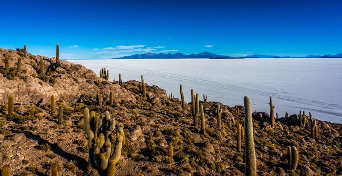 Incahuasi island uyuni bolivia