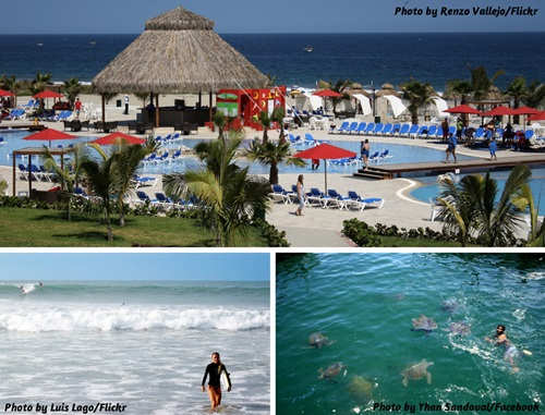 Photo collage of scenery and wildlife in Mancora, Punta Sal, and El Ñuro, Peru