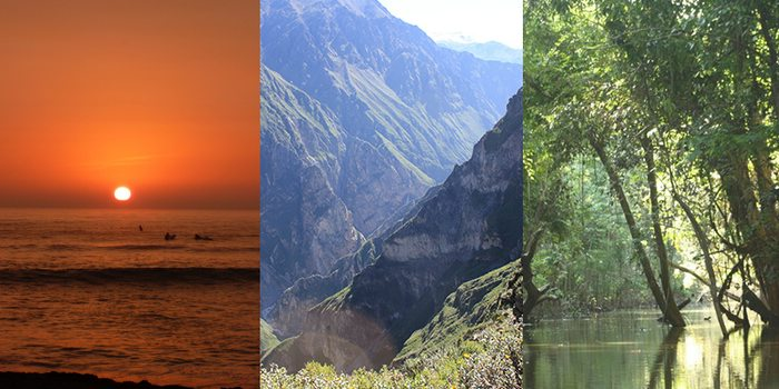 The Peruvian coast, sierra, and jungle