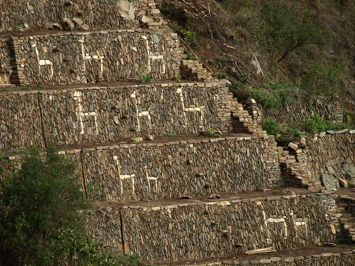 White stones placed in the shape of llamas in the intricate stonework of the Choquequirao ruins.