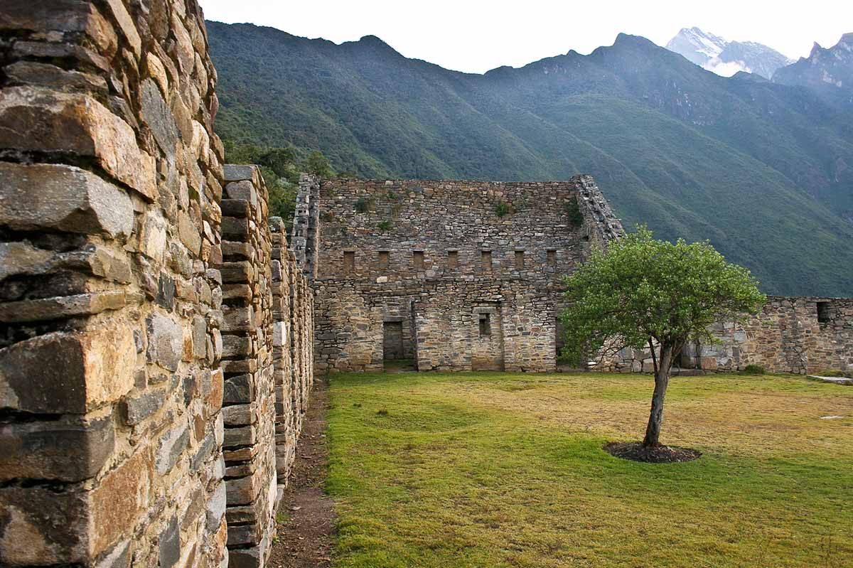 Stone walls of Choquequirao with windows and doors. Grass with one tree growing to the right and mountains in the background.