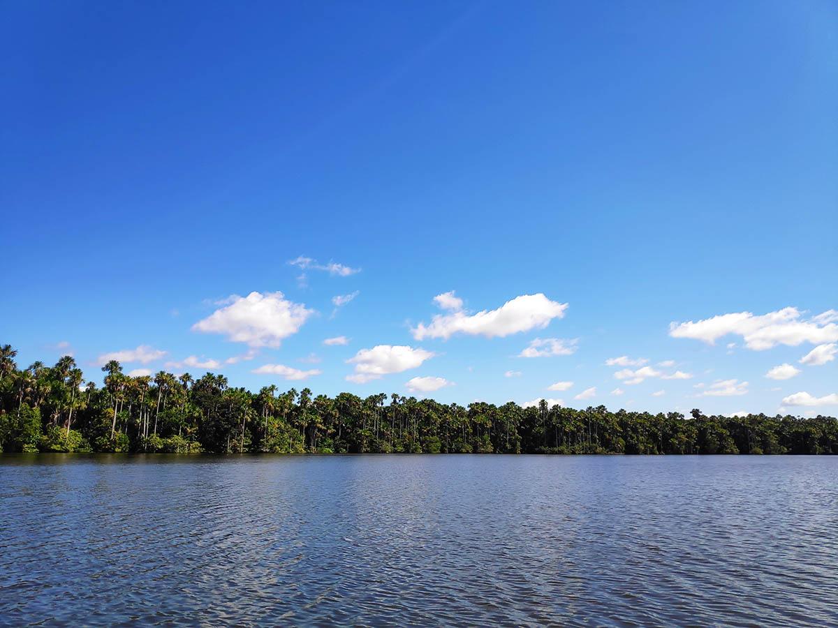 An Amazonian lake in Puerto Maldonado, the main city of the southern Peruvian Amazon.