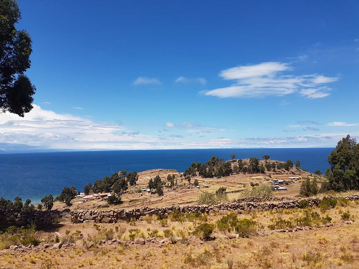 Tan and green flora atop Taquile Island with Lake Titicaca behind.
