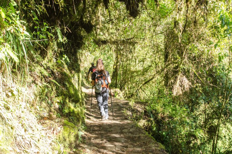 Inca Trial hiker walking with poles up a stone path
