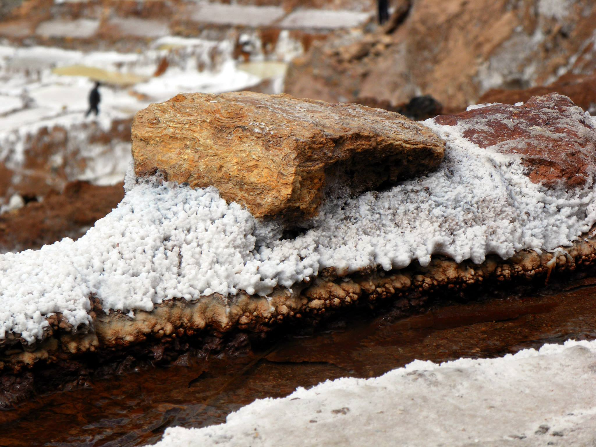 Close up of salt crystals forming on the rock in the Maras salt pans.