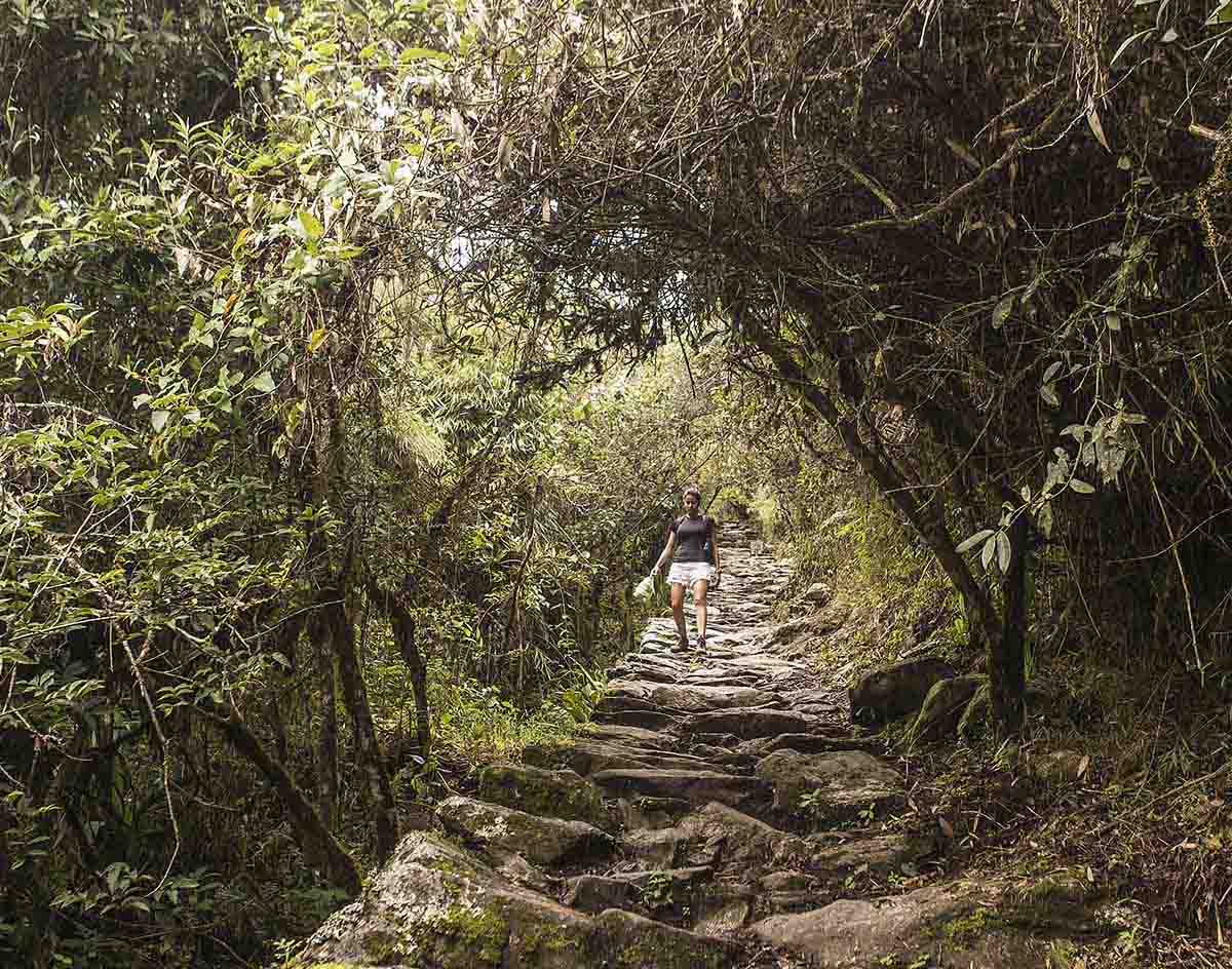 A woman descends the Machu Picchu Mountain path, an uneven, stone path surrounded by green trees.