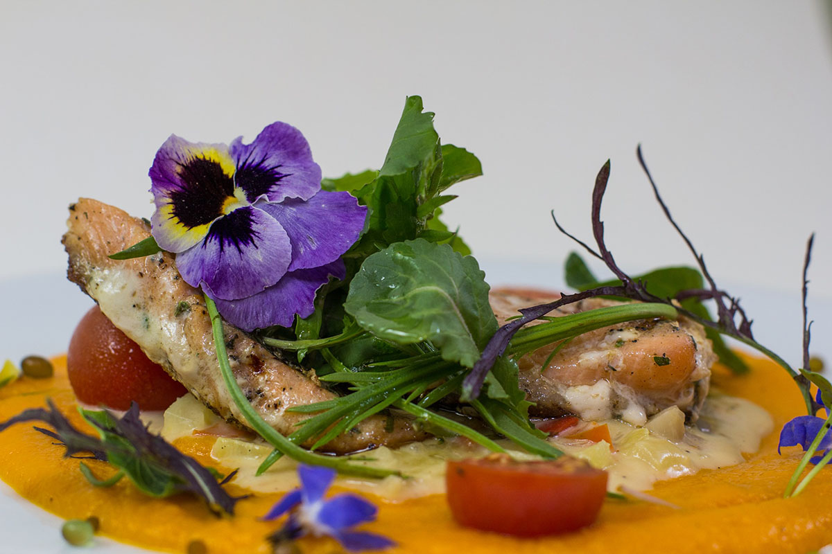 Colorful fish dish topped with greens and edible flowers from Organika in Cusco.