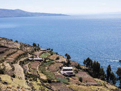 High angle of terraces on Taquile Island with Lake Titicaca and Amantani Island in background.