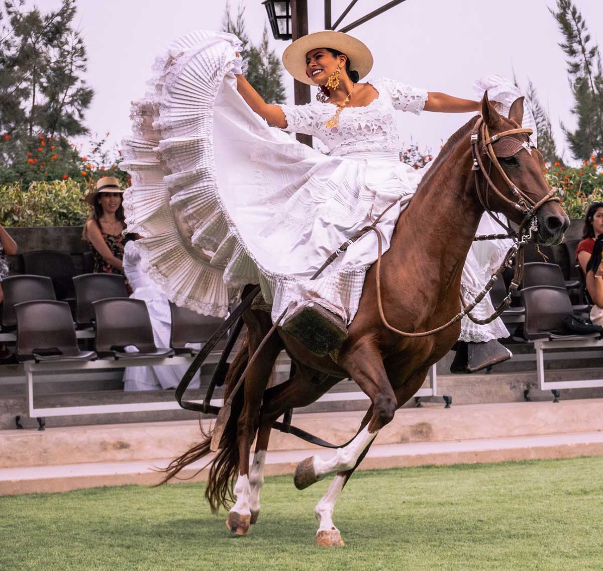 Woman in a white Spanish dress gracefully poses on a running horse at the Dpaso show in Lima.
