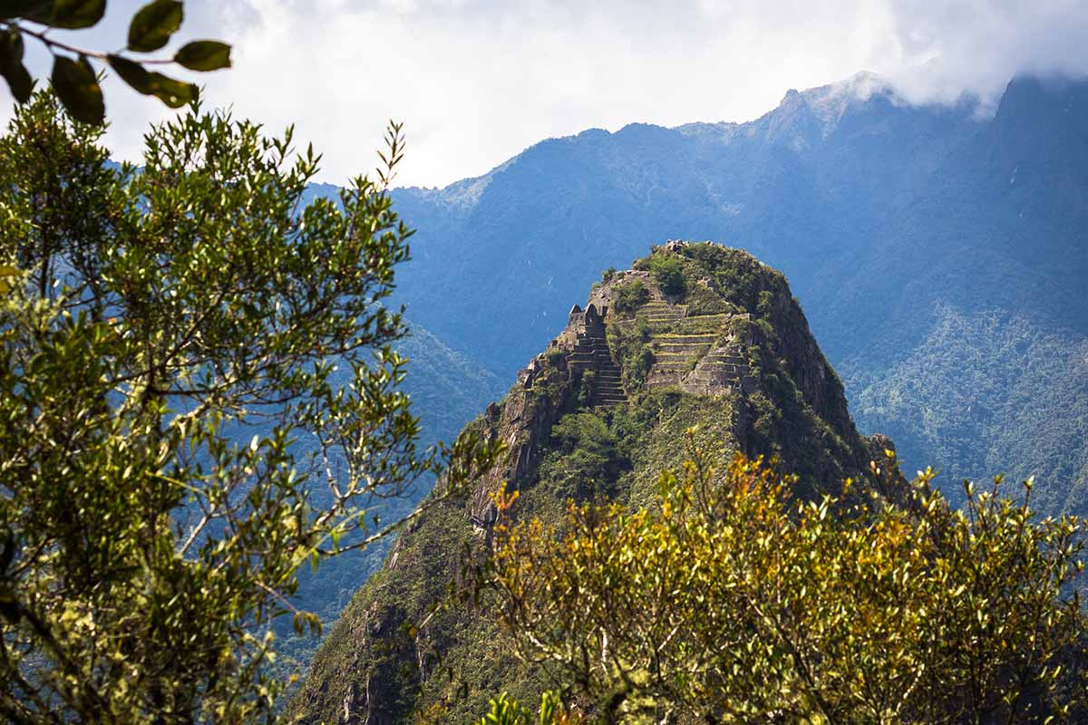 Huayna Picchu ruins and terraces built on the side of a green mountain seen through the trees