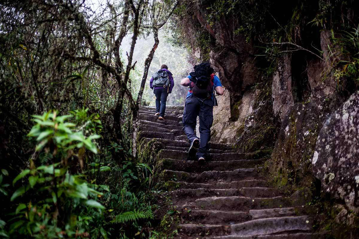 Two hikers ascend steep stairs with backpacks in a misty climate.