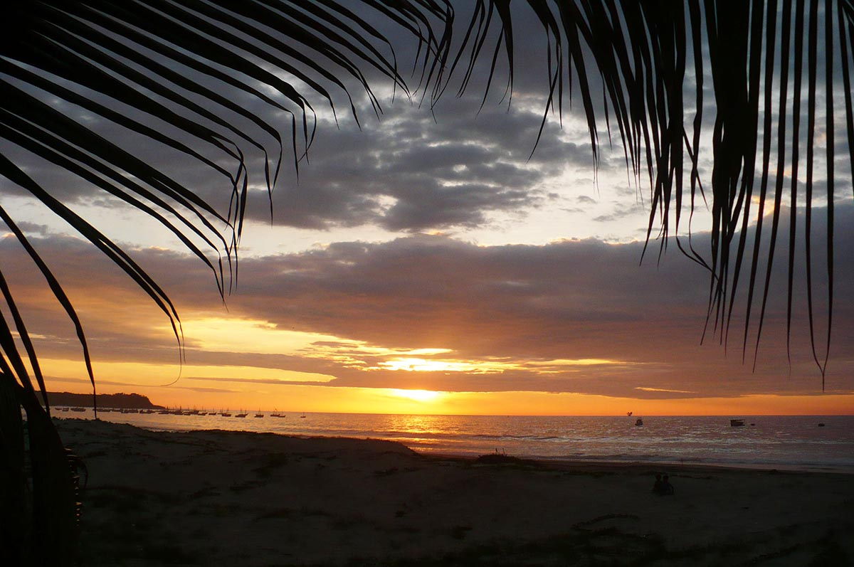 Orange and purple sunset at Los Organos beach framed by palm leaves.