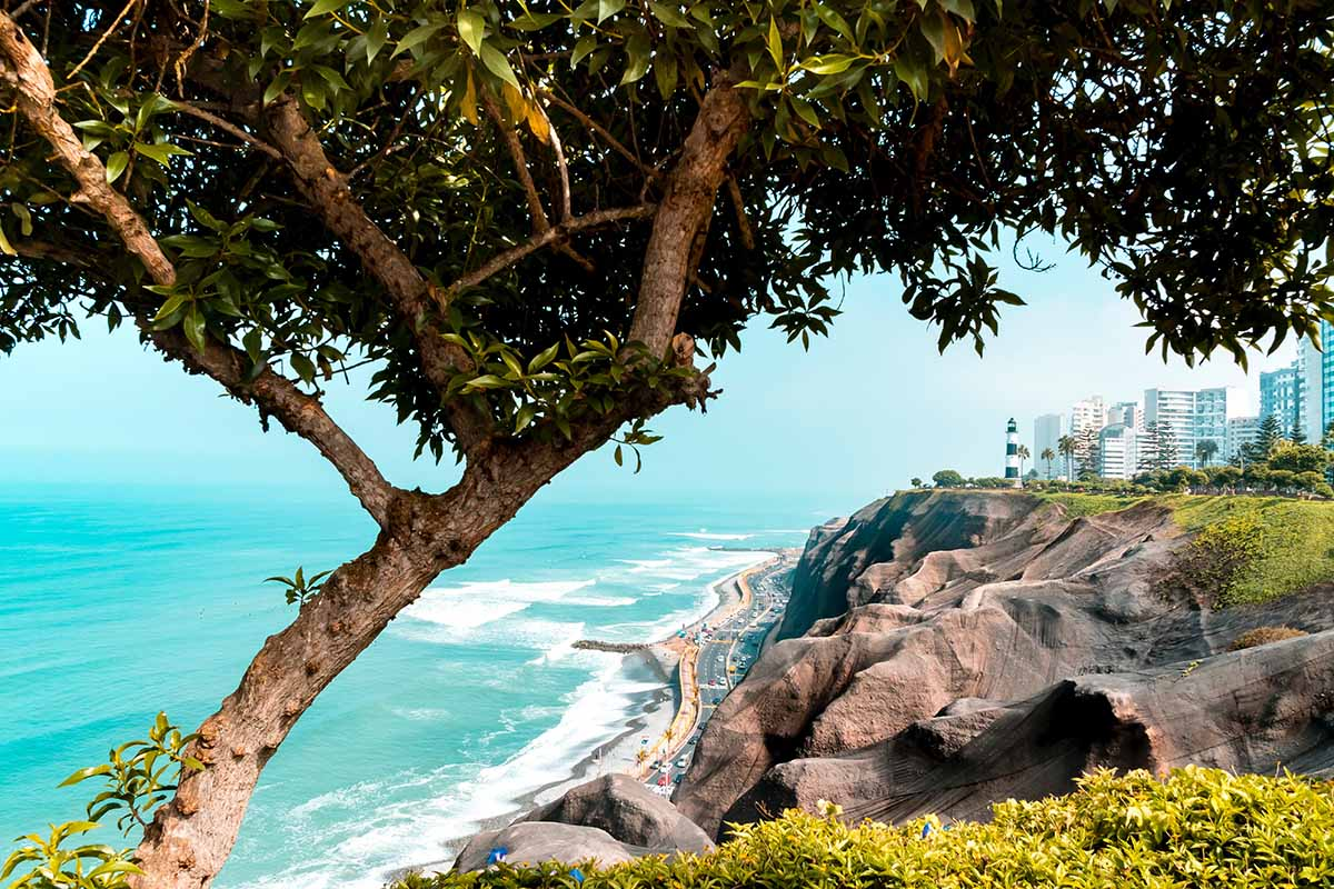 A view of Miraflores, the lighthouse, and Pacific Ocean with a lush tree in the foreground