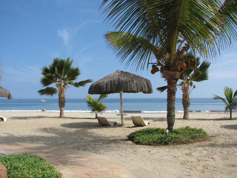 Palm trees and beach chairs dot the beach in Punta Sal, Peru.